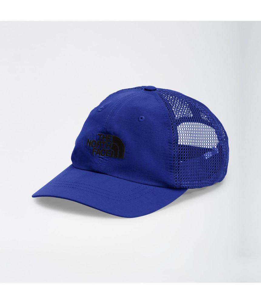 Horizon-Mesh-Cap